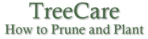 Tree care, planting and pruning